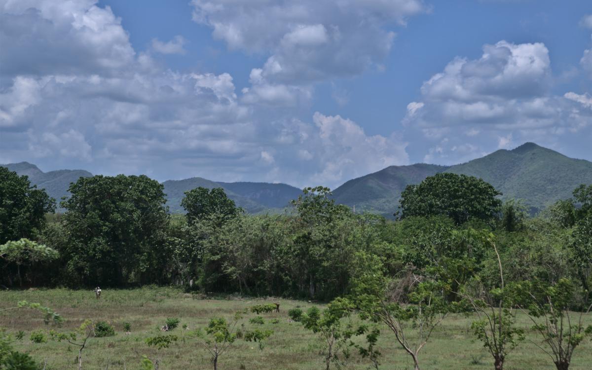 Sierra del Rosario Cuba Kuba